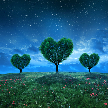 romance sky: Landscape with field and trees in the shape of heart in night.