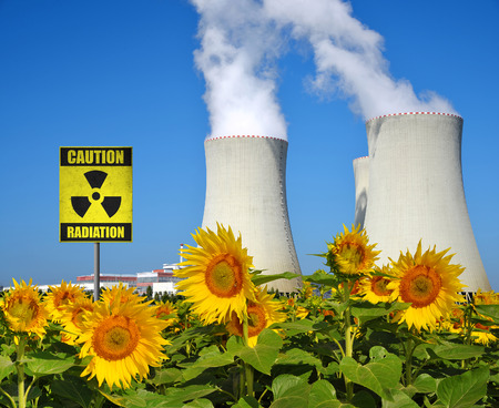 temelin: Smoke rising from cooling towers of nuclear power plant, in the foreground sunflower field. Stock Photo