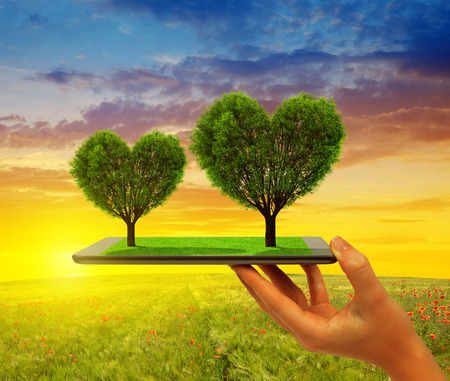Hand holding tablet computer with trees in the shape of heart at sunset. Stock Photo