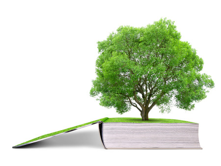 green environment: Book of nature with tree isolated on white background. Stock Photo