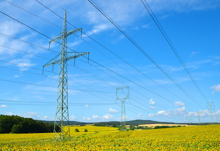 High voltage electricity pylons in sunflower field.