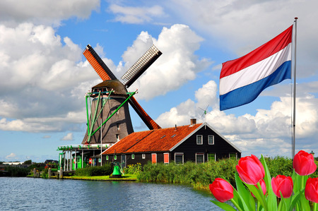 Traditional dutch windmills and houses in Zaanse Schans, Netherlands, Europe