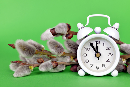 Spring time concept. Retro alarm clock with pussy willows branches on green background.