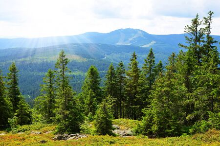 View from the top of mountain Zwercheck on the mount Grosser Arber in the Bayerischer Wald National Park. Germany.