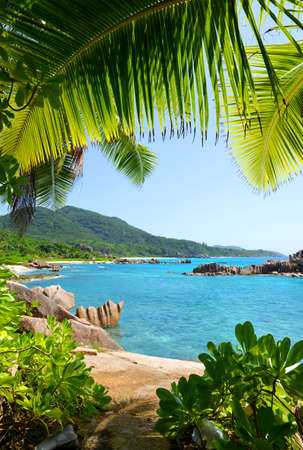 View on coast near Grand l'Anse beach in La Digue island, Indian Ocean, Seychelles. Tropical landscape with blue sunny sky.