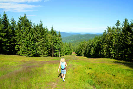 Hiker on a trip in Sumava National Park. Trail from the top of Pancir mountain, Czech Republic.