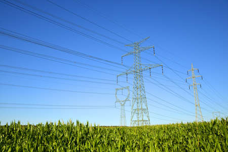 Electric pylons in the corn field. Transmission tower with blue sunny sky at the background. Stockfoto