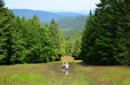 Hikers on a trip in Sumava National Park. Trail from the top of Pancir mountain, Czech Republic. Stockfoto