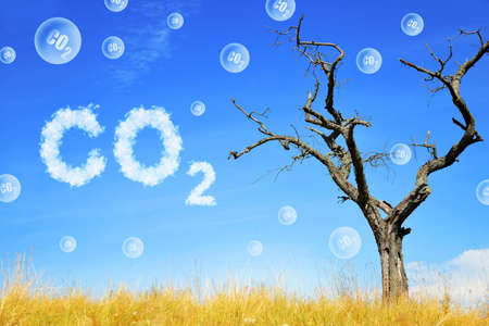 Dead tree and bubbles of CO2. Global warming or change climate concept. Environmental problems. Growing Carbon Dioxide in the atmosphere.