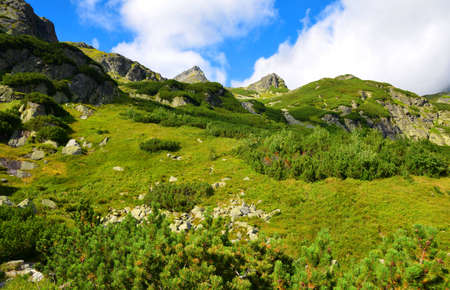 Mengusovska Valley, High Tatras, Slovakia. Mountain landscape in the Western Carpathians.