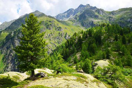 Summer mountain landscape near town La Thuile, Aosta Valley, northwest Italy.