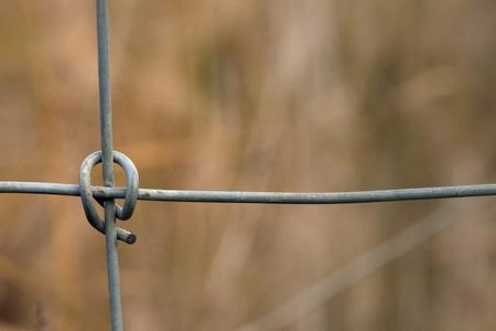 Metalic border