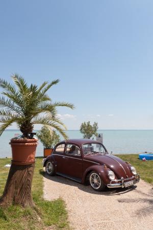 vw: VW 1200