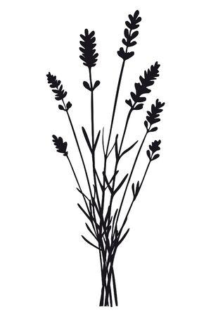 Bunch of sprig of lavender flower - black silhouette