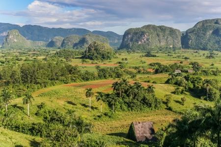 View of Valle de Vinales in the west of Cuba  photo