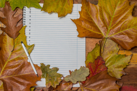 Notepad and pen with autumn leaves on a wooden table photo