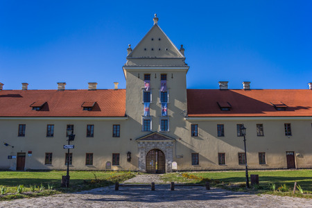 The castle of Zhovka at the central square