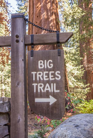 sequoia national park: Big trees trail sign in Sequoia National Park, USA Stock Photo