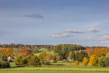 Vibrant autumn colors in Groesbeek, The Netherlands