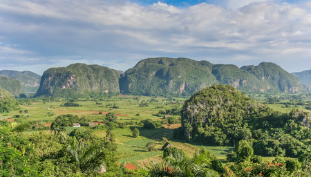 pinar: Panorama of Valle de Vinales in the west of Cuba