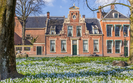 Spring flowers in front of an old building in Groningen, Netherlands