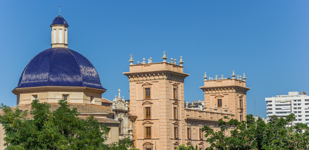 Panorama of the Fine Arts Museum in Valencia, Spain