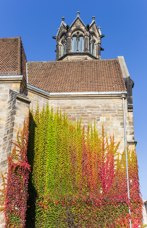Colorful ivy climbing the evangelical church of Hannover, Germany Stock Photo