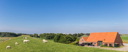 Panorama of a dike and a farm in Texel, Holland Standard-Bild - 105495425