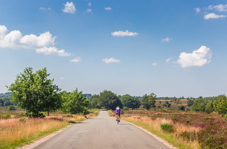 Cyclist going down the Holterberg mountain in national park Sallandse Heuvelrug of Holland Editorial
