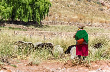 Shepherd in traditional clothing in the Andes mountains in Argentina