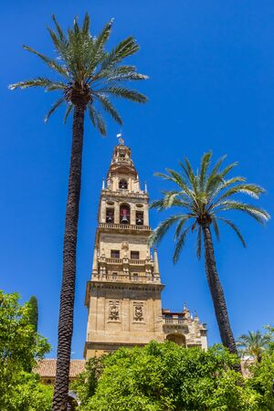 Palm trees and belfry of the mosque cathedral in Cordoba, Spain 版權商用圖片
