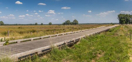 Panorama of a wooden bicycle bridge in national park Dwingelderveld, Netherlands