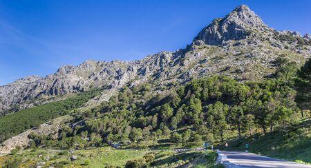 Panorama of the road through Grazalema National Park, Spain