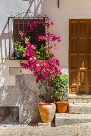 Flowers at the entrance of a traditional white house in Zahara, Spain Imagens - 132845507