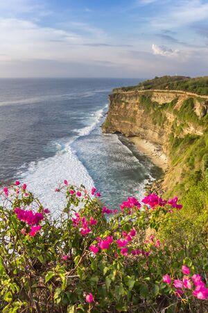 Flowers in front of the cliffs at Ulu Watu, Bali, Indonesia