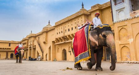 Panorama of elephants at the Amber Fort in Jaipur, India 新聞圖片