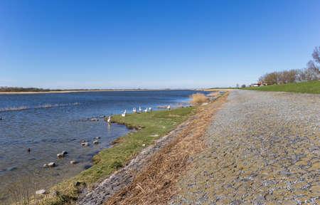Dike at the IJsselmeer lake in Makkum, Netherlands Stockfoto