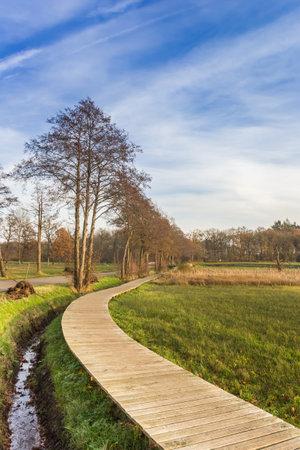 Wooden boardwalk in the nature area of Oudemolen, Netherlands