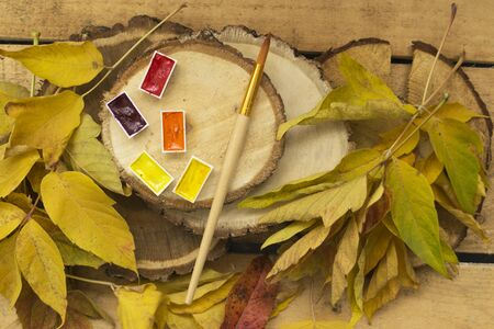 Autumn background with yellow leaves of trees, with yellow, red, orange watercolor paint and with an art brush lie on wooden log cabins. Bright autumn concept.