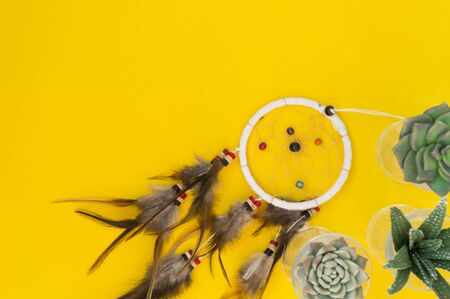 Dreamcatcher with brown feathers on a yellow background. Green succulents flowers are pocked. There is a place for text. Ethnostyle. Banque d'images