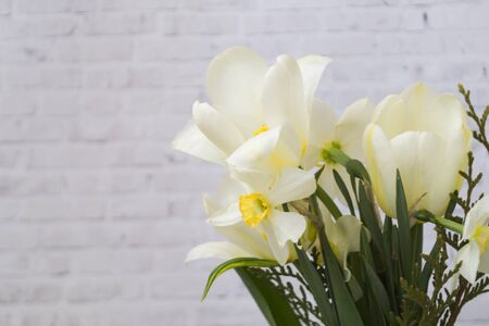 white daffodils collected in a bouquet on a light brick background. There is a place for text. Copy space. Spring concept.