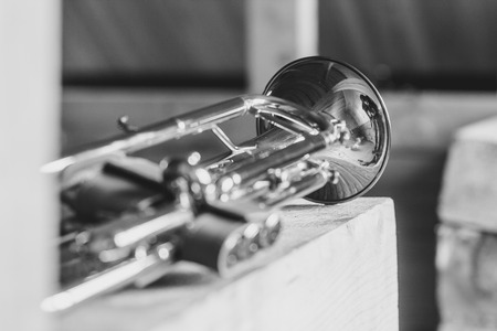 brassy: Trumpet on musical notes as background close up