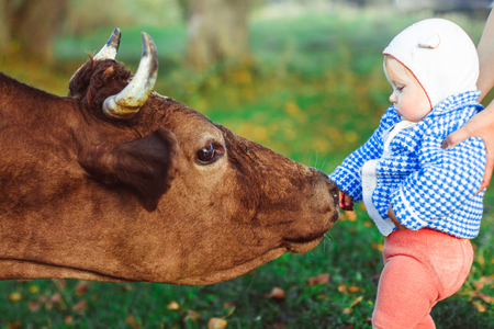 a little girl and a cow on green grass
