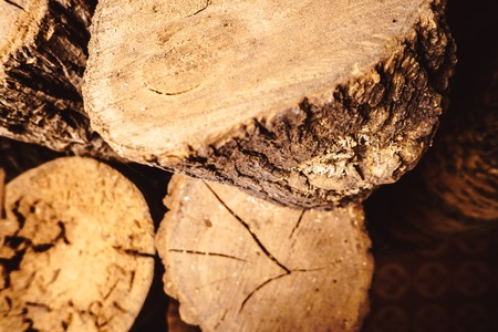 Old weathered wood texture with cross section of log cut in lathe workshop Stock Photo