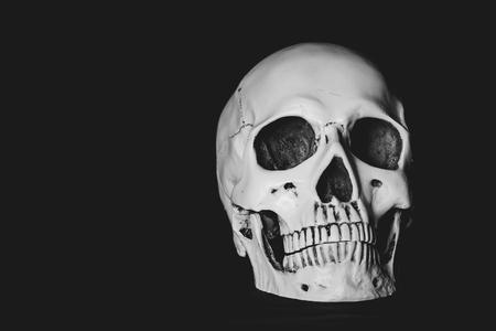 Human skull on dark background.