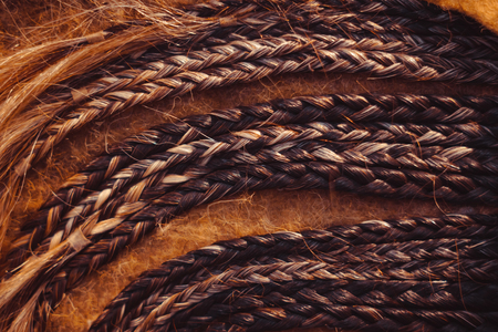 Fashion hairstyles braids braids : many small breeds tail creative hairstyles with thick braids