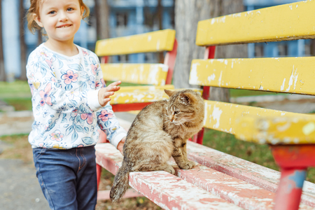 little girl playing with a cat on a Park bench Stockfoto