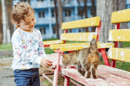 little girl playing with a cat on a Park bench Imagens - 124706899