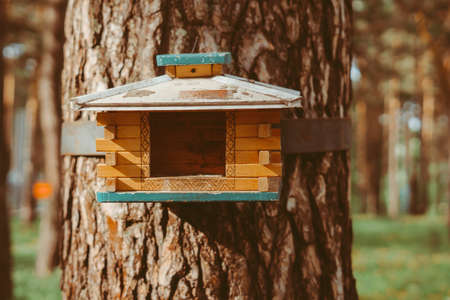 wooden birdhouse hanging on a tree