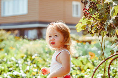 child in the garden on a Sunny day